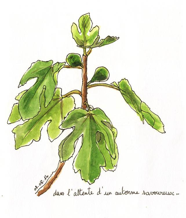 croquis_du_jour41