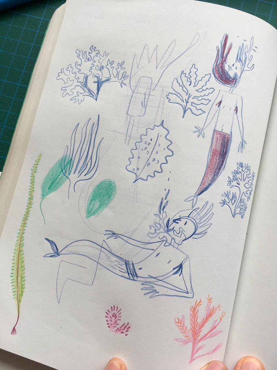 croquis d'algues et de sirènes au crayon de couleur